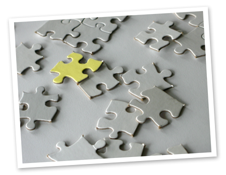 Integrated care puzzle